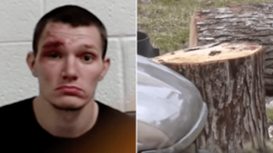 Animal abuser beat puppy to death with log outside school at home time