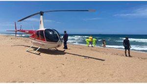 Father, son and dog drown in a beach