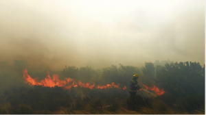 It could take more than a week to quell Cape Town raging fire