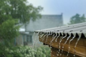 Brace up for cold front, wet weather and possible snowfalls